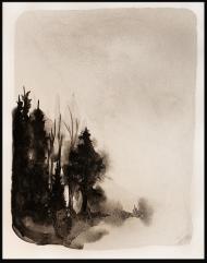 <p>Rorschachskog 1 (400 kr) - akvarell på akvarellpapper, 28 x 21 cm. 2014</p>