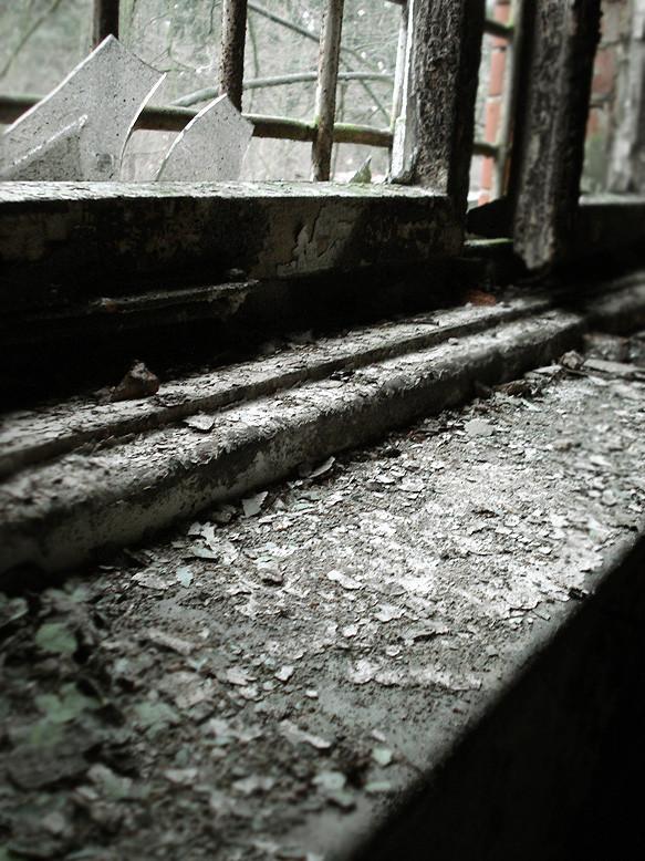 fönsterskräp
