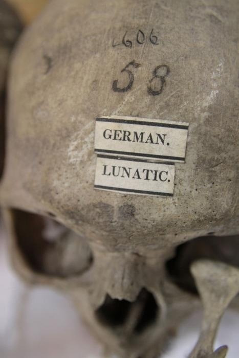 95939982636 - theoddcollection german lunatic from the